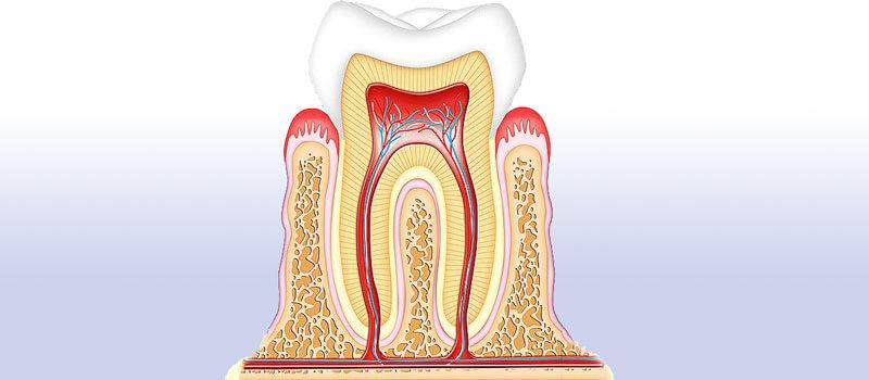 Knochenaufbau Kieferkammaufbau - Zahnarzt Praxis Papczyk in Gera